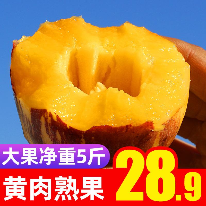 【精品大果】甘肃民勤人参果特大5斤黄肉熟果新鲜水果人生果