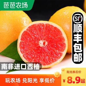 南非进口红心西柚包邮新鲜水果10个当季柚子孕妇整箱爆汁大葡萄柚