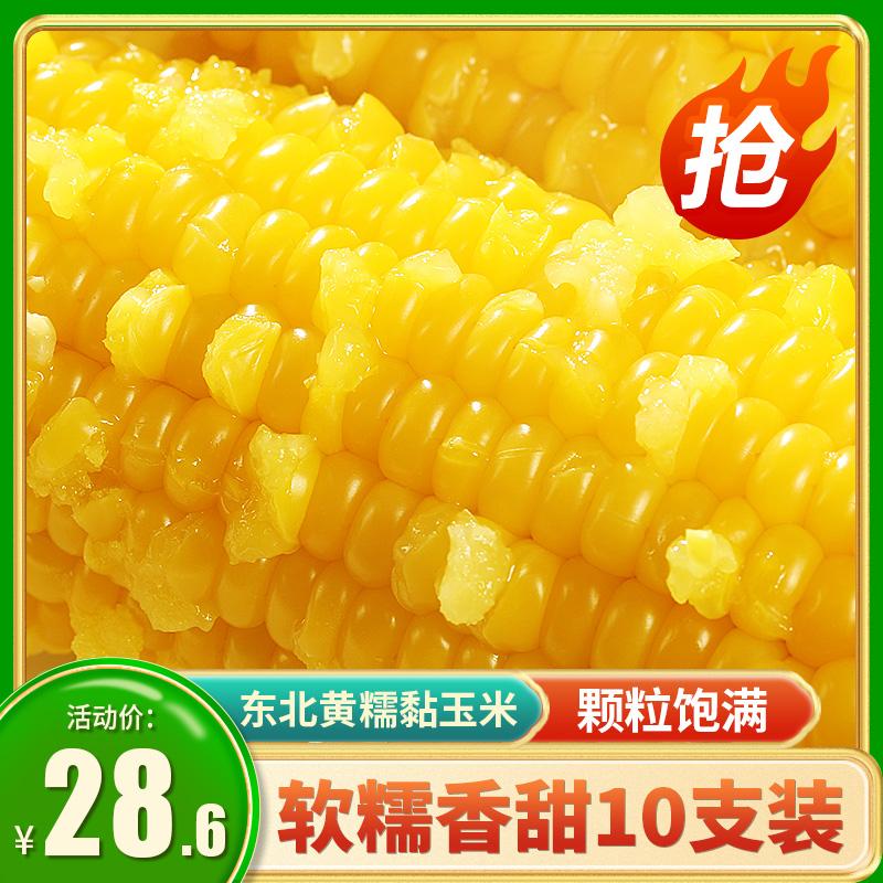 【爆款推荐】玉米糯玉米东北黏糯黄玉米10支新鲜即食减代真空肥现摘餐甜粘大棒