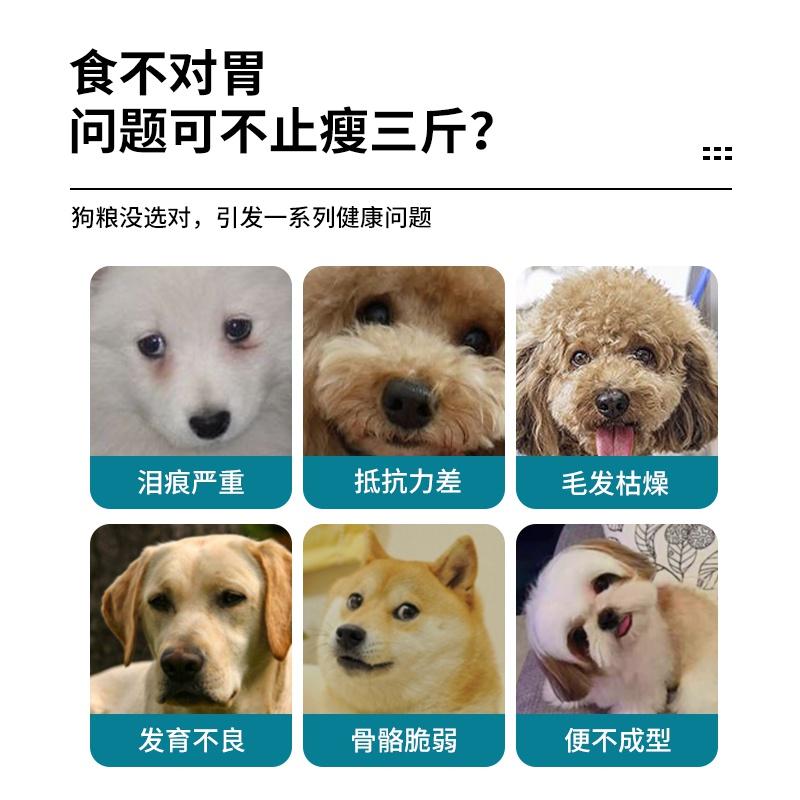 狗粮加纳利犬天然狗粮100斤40斤高加索中亚成犬大型犬通用大包。优惠券