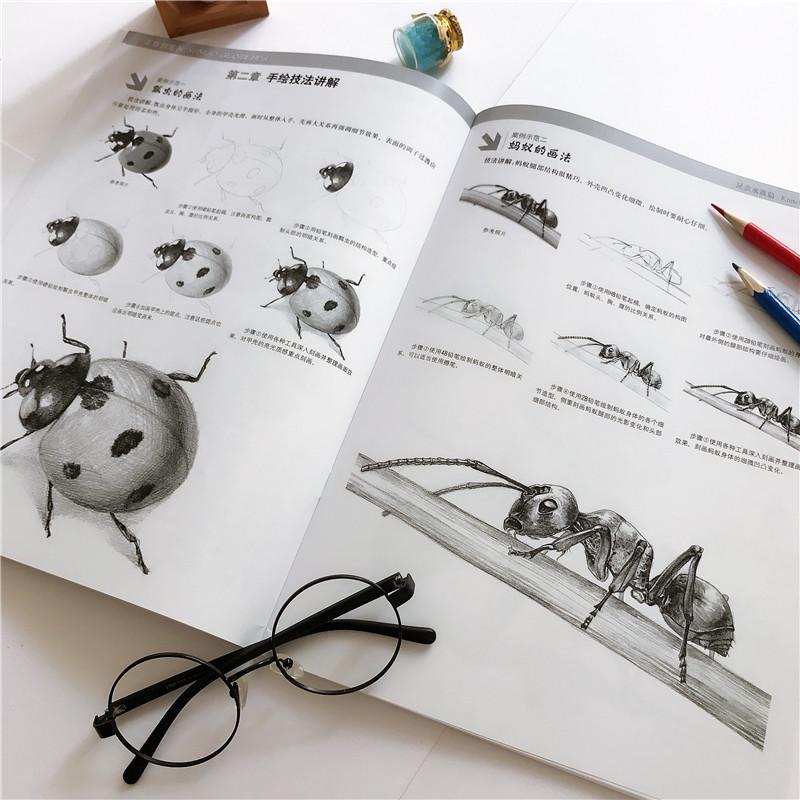 素描绘画教程教材书籍 握笔姿势介绍 零基础素描技法 学画蜻蜓蜜蜂金鱼等画法手绘素描从入门到精通 昆虫水族篇 素描铅笔画 正版