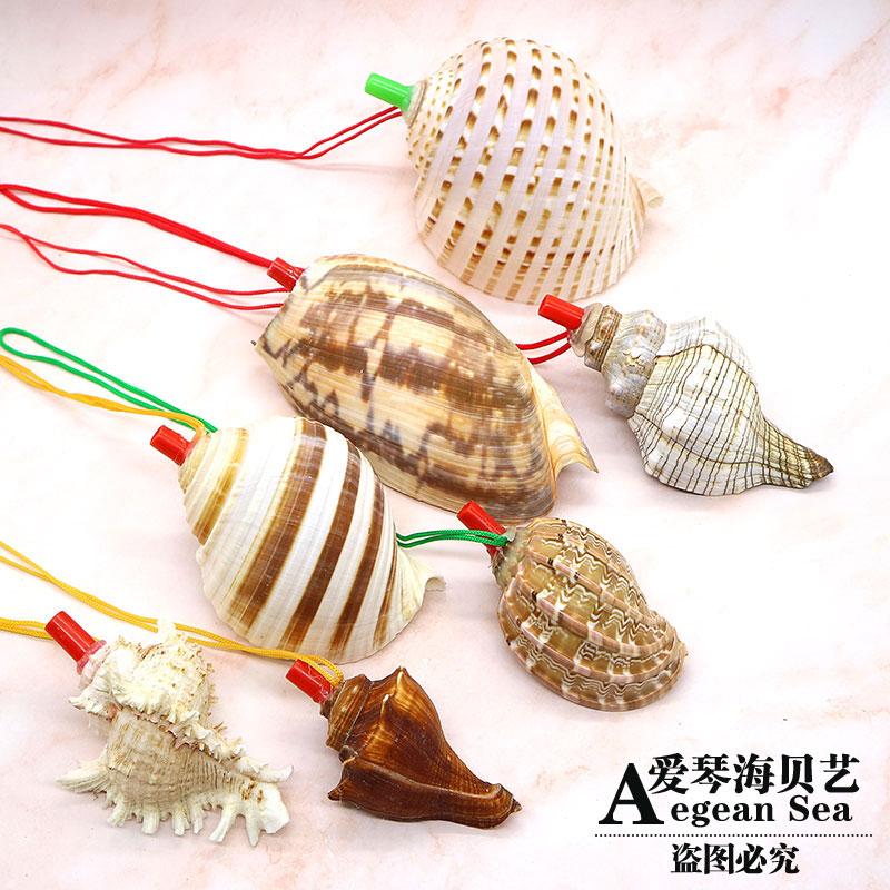 天然大海螺贝壳螺号哨子儿童玩具口哨贝壳工艺品可吹响号角礼物
