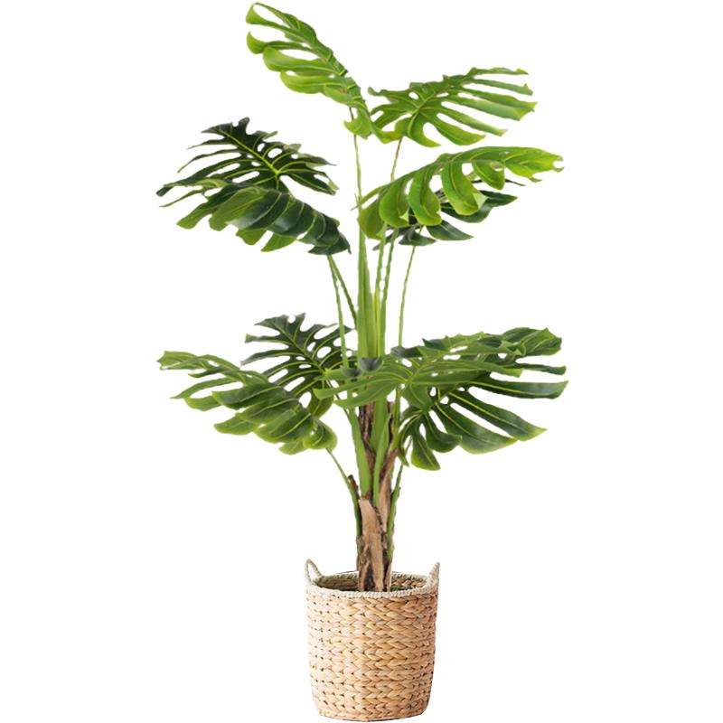 南十字星 简约客厅大型仿真绿植盆栽摆件 北欧假植物室内夏威夷葵