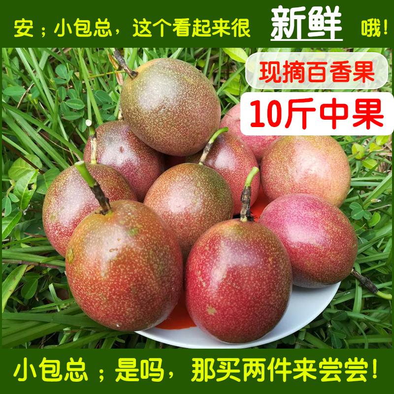 广西中现摘新鲜热带孕妇百香果图片_2