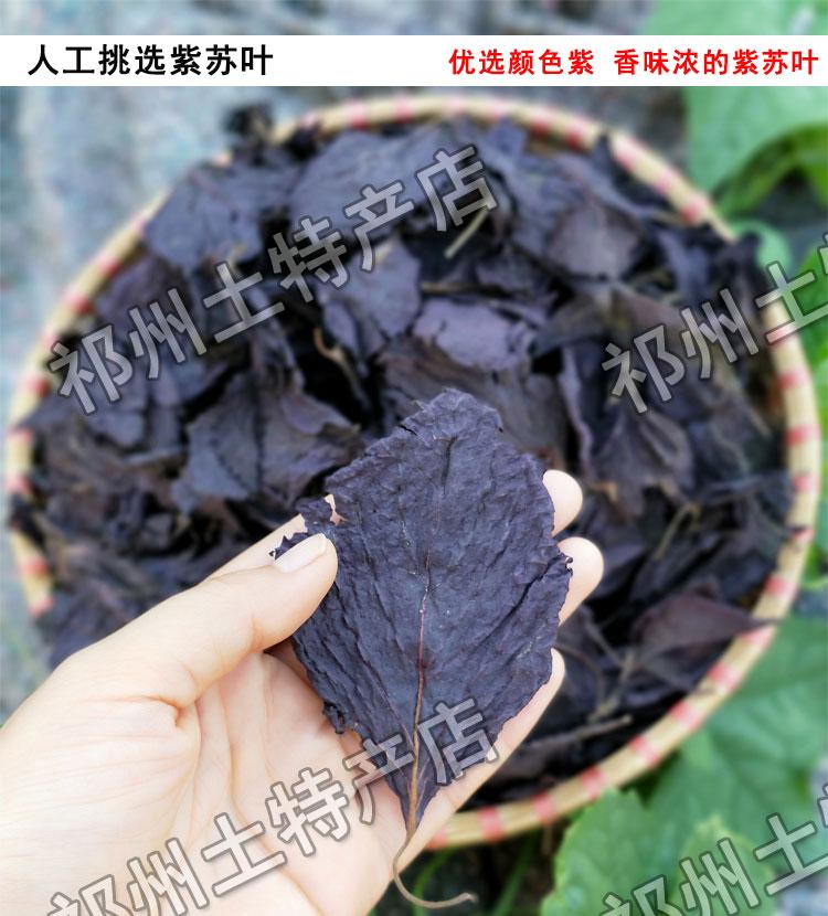新货紫苏双面紫苏叶新鲜农家非野生苏子叶干鱼虾蟹香料500克正宗