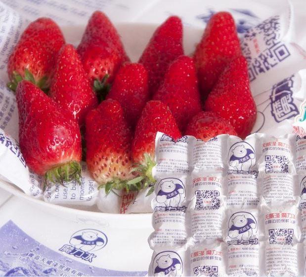 航空冰袋空运保温冷藏海鲜水果肉食降温食品24格保鲜注水保鲜包