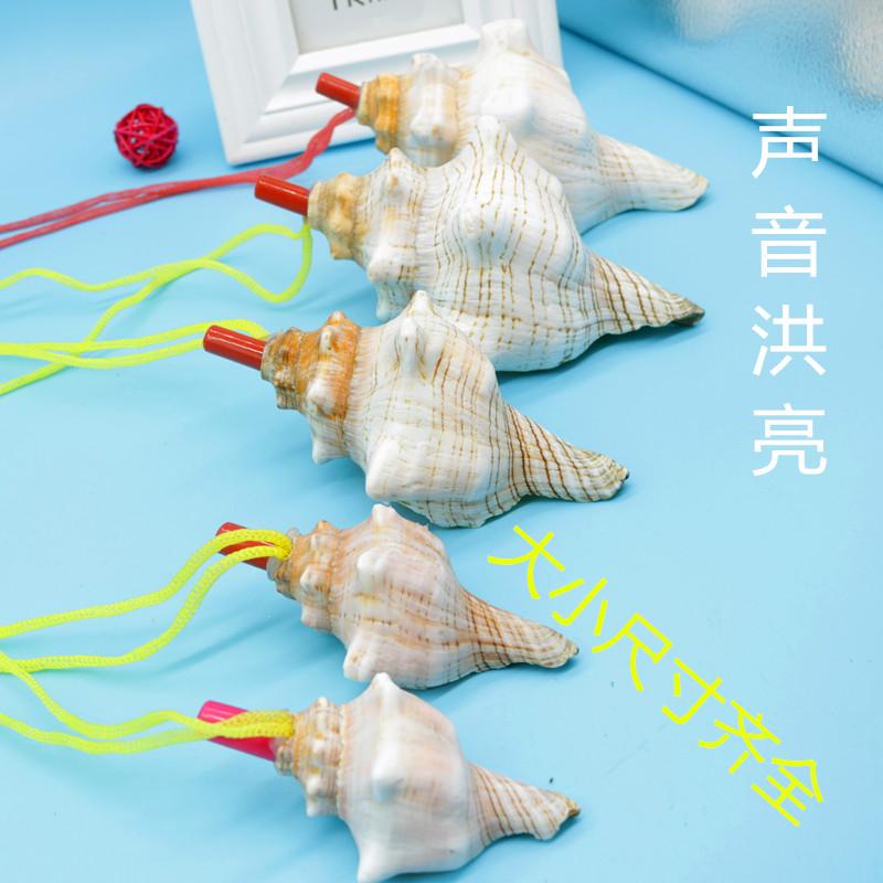 天然海螺口哨大海螺响螺号海螺贝壳工艺品创意礼物儿童玩具螺吹