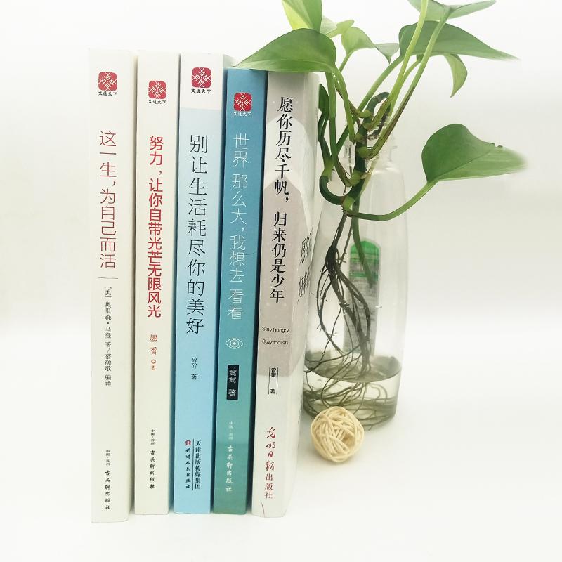 青春励志文学书(全5册) 现当代青春文学散文随笔小说畅销书籍 愿你历尽千帆归来仍是少年世界那么大我想去看看心灵与修养成功励志