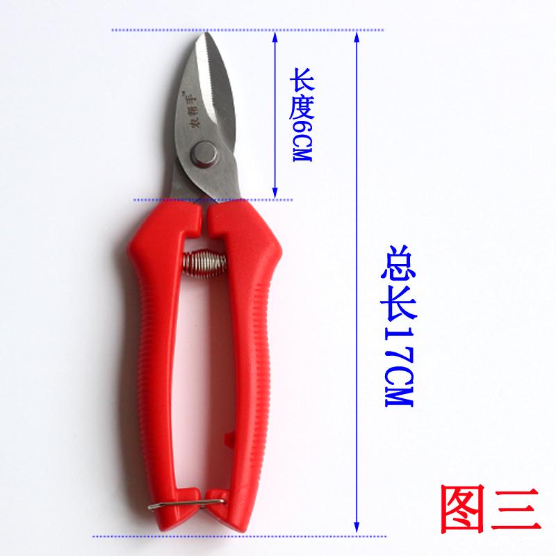 名钻 农帮手 稀果剪采摘剪 葡萄果蔬柑橘剪不锈钢园艺尖头长剪刀