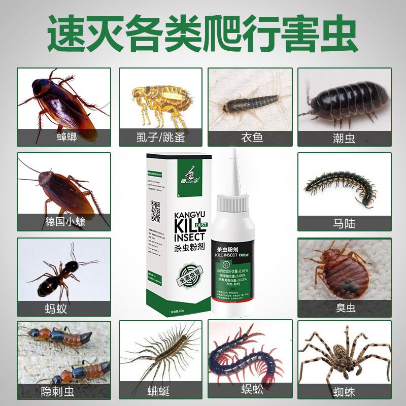 杀虫药粉驱防灭除室内蜈蚣马陆潮虫蟑螂药克星神器家用厨房杀虫剂