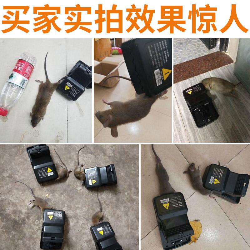 4 只装驱老鼠夹捕鼠器家用灭鼠神器抓杀扑老鼠夹子捉老鼠笼全自动