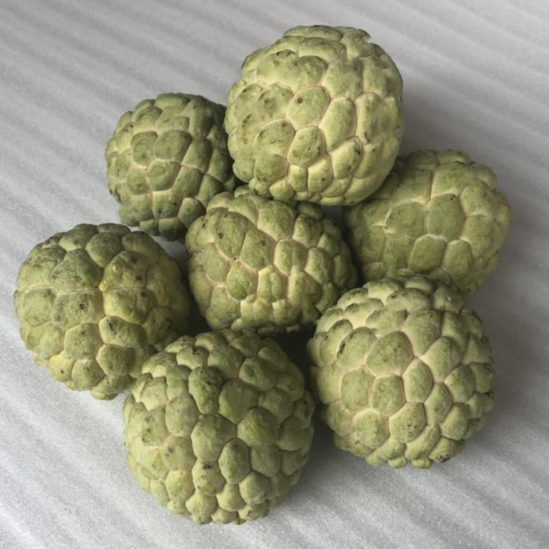 泰国新鲜热带水果释迦果佛头果番荔枝凤梨大目释迦孕妇5斤包邮