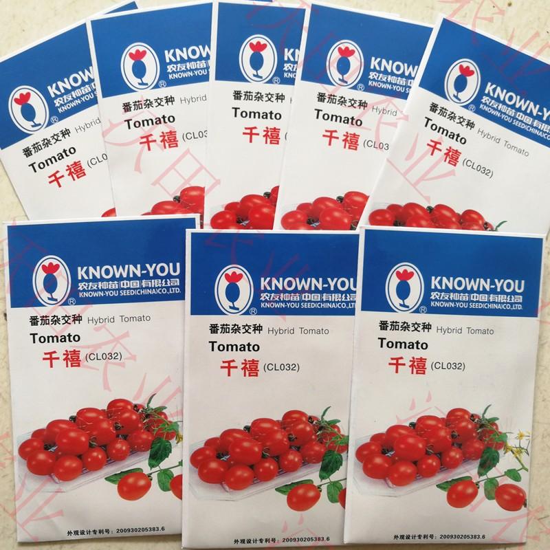 千禧小番茄种子农友樱桃圣女果粉红西红柿种籽种苗四季播高产包邮