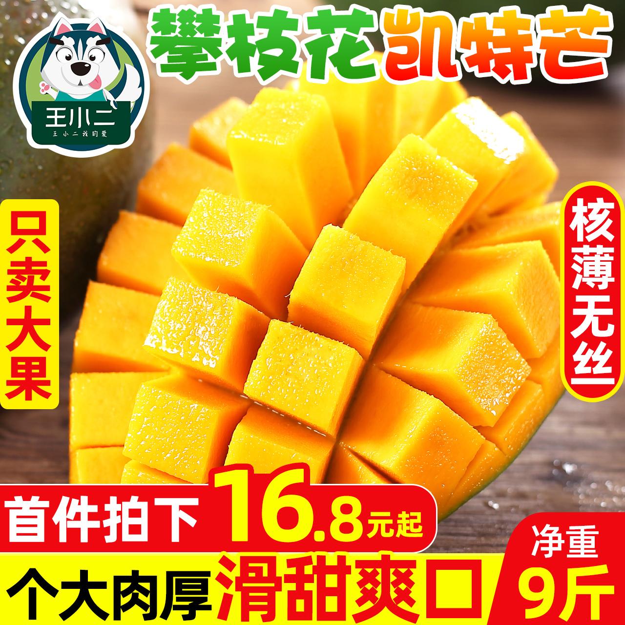 攀枝花凯特芒10斤芒果水果新鲜包邮应当季整箱大青皮芒热带特大芒