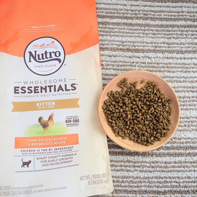 NutroChoice美士天然幼猫粮奶糕猫粮鸡肉糙米 5磅优惠券