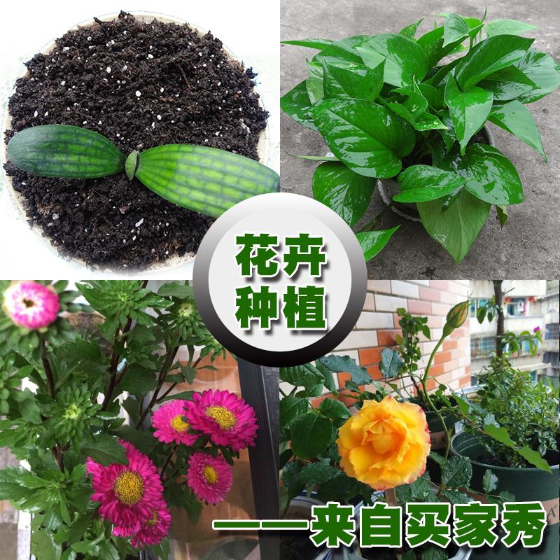 花土营养土花肥家用养花兰花种植土花盆栽通用型多肉专用花泥土壤