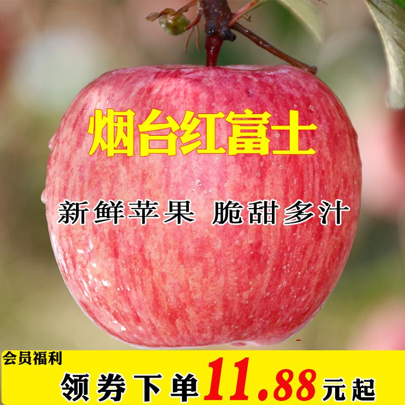 甜嘴猴 烟台苹果红富士新鲜水果苹果批发山东苹果水果新鲜包邮
