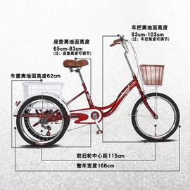 新款凤凰中老年脚蹬人力三轮车老人脚踏自行车成人载货两用代步车