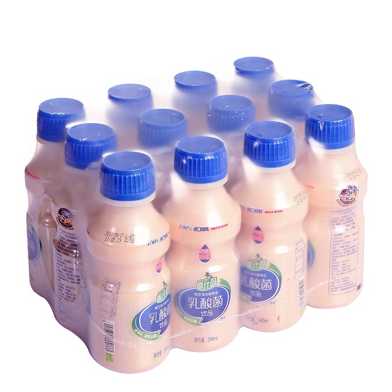 椰汁岛乳酸菌饮品零脂肪酸奶牛奶儿童酸奶饮料340mlx12瓶整箱