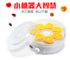 Household small apartment special drying fruit machine food dehydration air dryer fruit vegetable pet meat food dryer