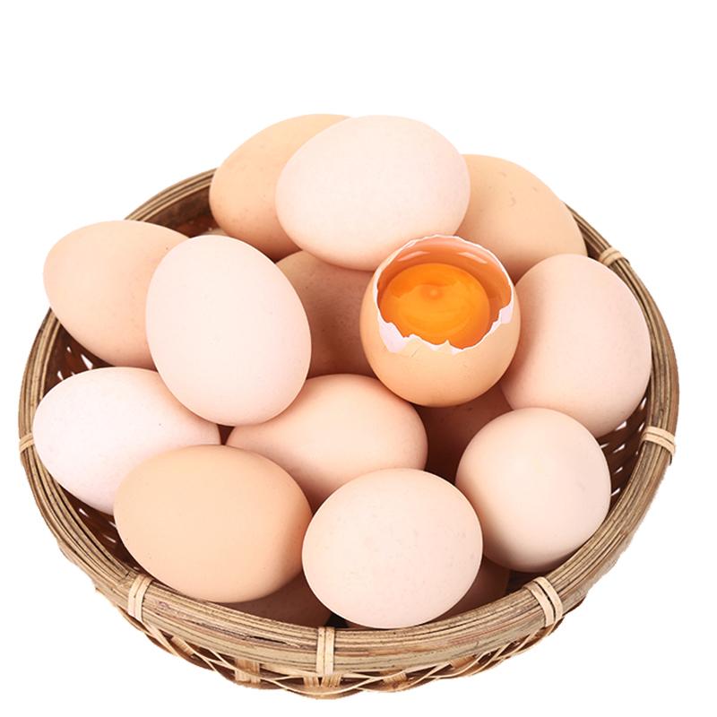 百食轩 正宗农家散养土鸡蛋草鸡蛋柴鸡蛋笨鸡蛋农村新鲜鸡蛋40枚