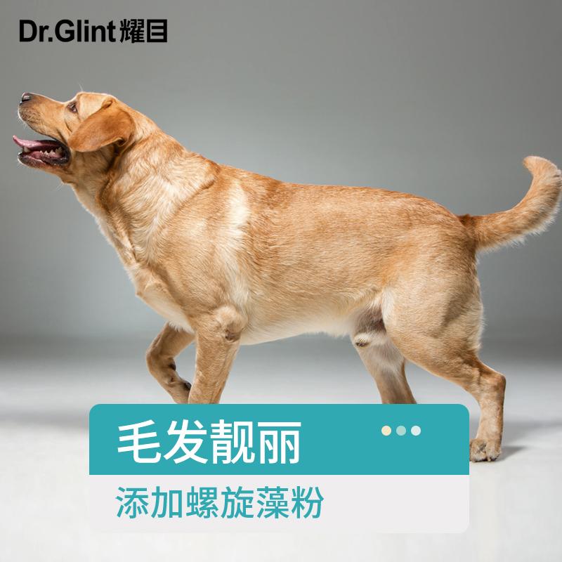 耀目 狗粮金毛拉布拉多萨摩边牧哈士奇专用幼成犬大型犬天然粮8斤
