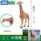 动物玩具模型仿真野生tomy多美大猩猩鳄鱼老虎长颈鹿大白鲨鱼玩具