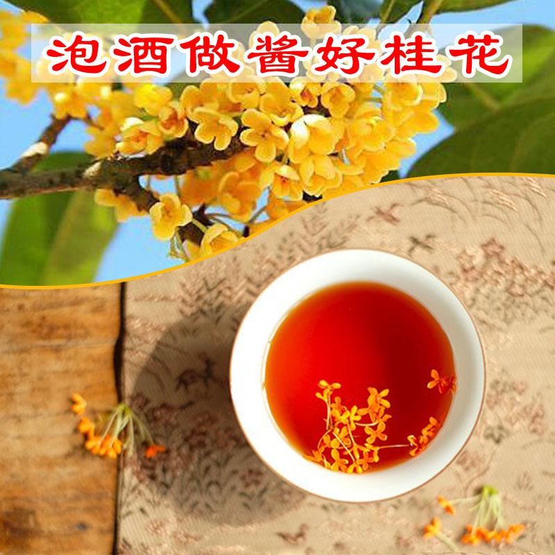 特级桂花干茶叶天然金桂花糕泡酒浓香型 500g 桂花茶干桂花散装食用