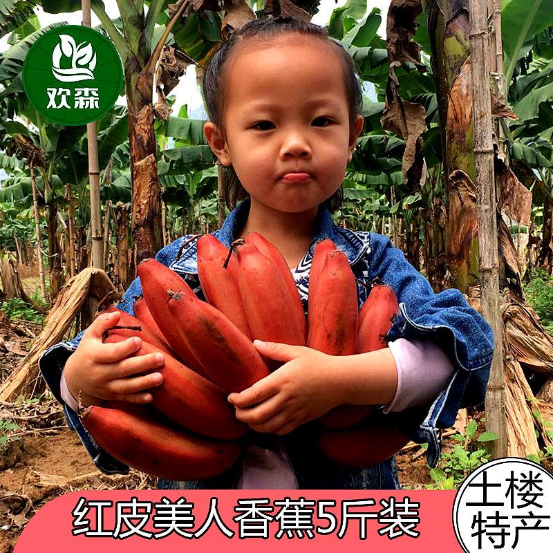 红皮香蕉5斤包邮 福建土楼新鲜美人红香蕉水果火龙蕉非小米蕉高清大图