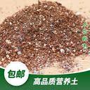 进口营养土阳台种菜土壤颗粒土多肉绿萝月季绣球花卉盆栽绿植家用 - 2