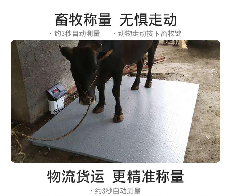 吨工业小型电子地磅称 5 吨 3 1 上海耀华地磅秤称猪秤牛带围栏防抖动