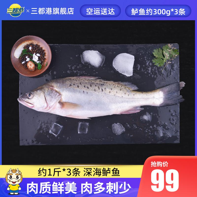 三都港海鲈鱼 花鲈子鱼卢鱼深海新鲜海鲜生鲜冷冻水产约500g*3条