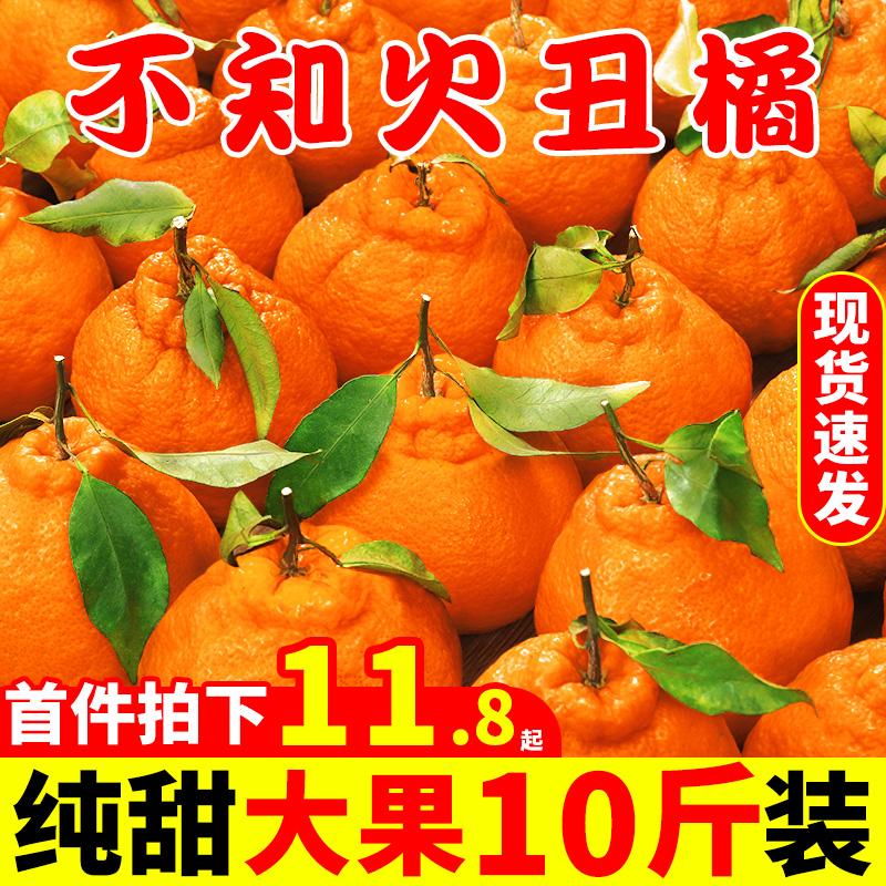 四川不知火丑橘10斤新鲜当季水果整箱桔子丑八怪丑粑粑耙耙柑包邮