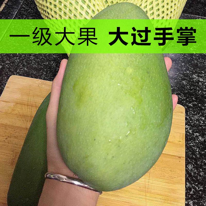 越南芒果大青芒特级净重9斤新鲜水果孕妇当季整箱甜心金煌芒应季