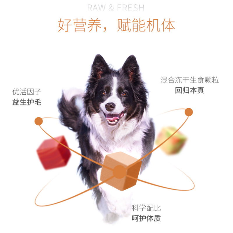 伯纳天纯狗粮2kg生鲜冻干成犬幼犬通用型泰迪小型犬博纳天纯犬粮优惠券