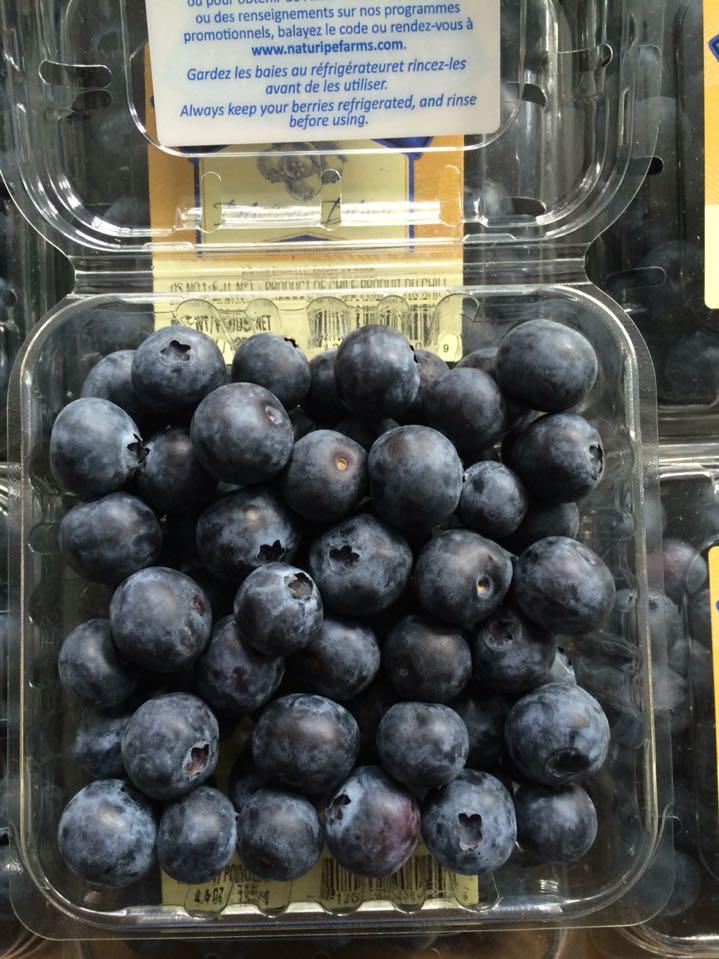 现货新鲜蓝莓鲜果 当季上市新鲜蓝莓水果12盒装宝宝辅食 顺丰包邮