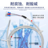Waterproof and anticorrosion Teflon thermocouple, acid and alkali resistant thermocouple electroplating plant K type PT100 temperature sensor