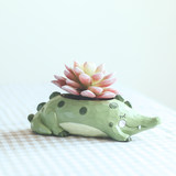 If zakka creative cartoon animal succulent flower pot personality cute whale micro landscape potted decoration