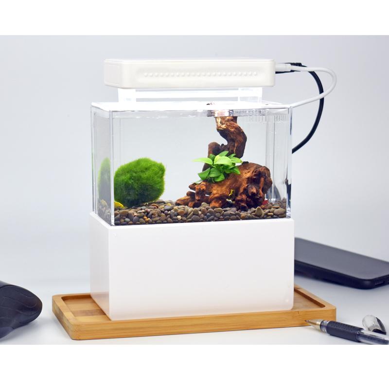 寸泽微缸办公室迷你小鱼缸宿舍桌面小缸淡海水族箱过滤斗鱼生态缸