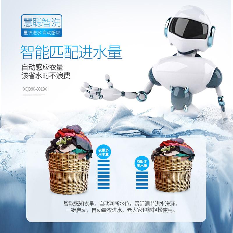 8019X XQB80 公斤智能家用大容量波轮全自动洗衣机脱水甩干 8kg 威力