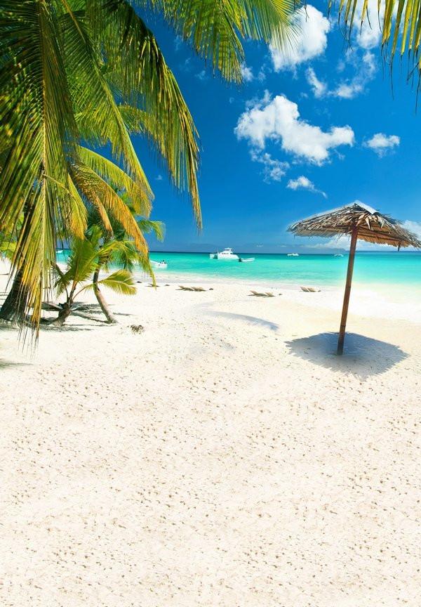 新自然風光婚紗攝影背景布 藍天白雲大海沙灘模擬寫真拍照背景紙
