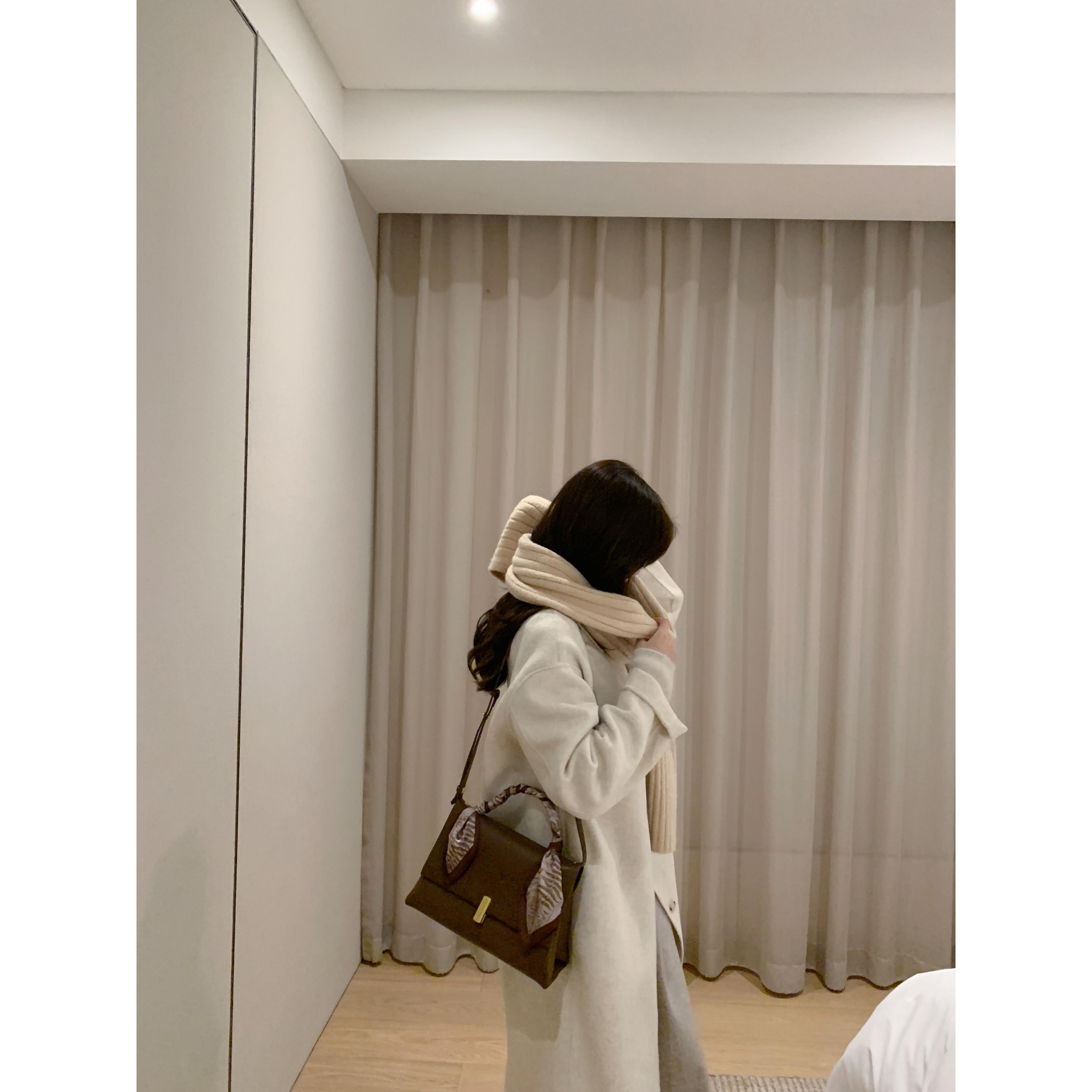 2021 手提丝巾单肩包包女包新款潮时尚斜挎包 戴安娜女王 南风