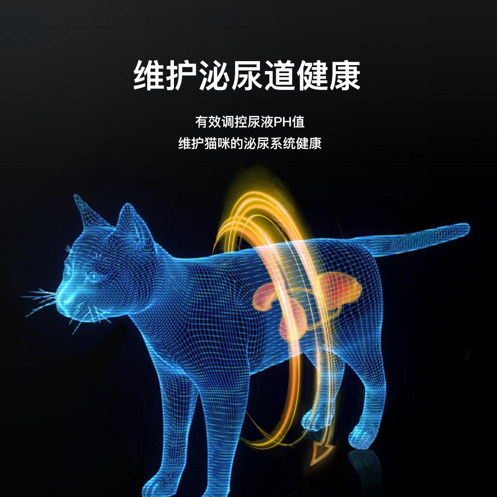 佩玛思特幼猫猫粮2kg孕猫增肥发腮猫奶糕佩玛斯特10布偶petmaster优惠券