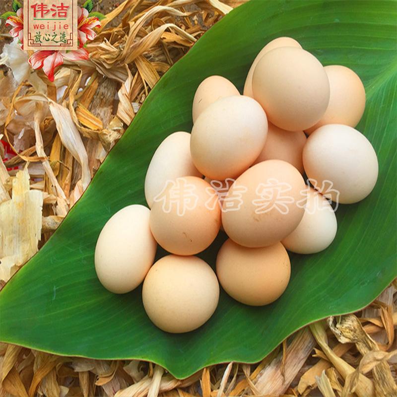 土鸡蛋店主推荐正宗农村散养新鲜笨鸡蛋 非超市商品 鸡蛋包邮30枚