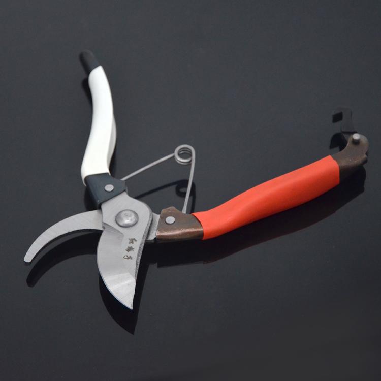 包邮 红梅子 整枝剪 花枝剪 修枝剪 树枝剪 摘果剪 园林工具