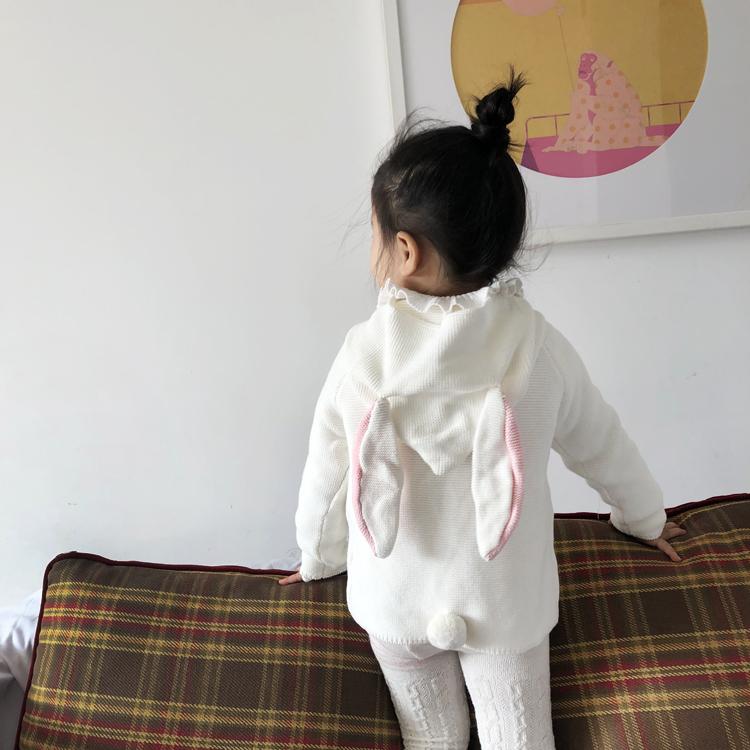 妮家ins19秋冬婴幼小儿童兔子耳朵连帽毛衣男女宝宝洋气棉针织衫