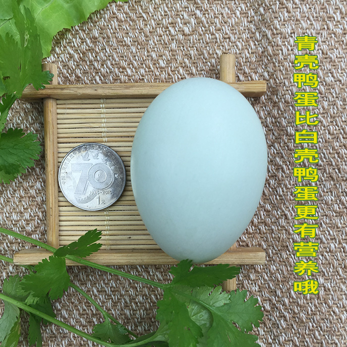 新鲜土鸭蛋农家散养生鸭蛋大个草野麻鸭蛋绿皮青壳水鸭蛋30枚包邮