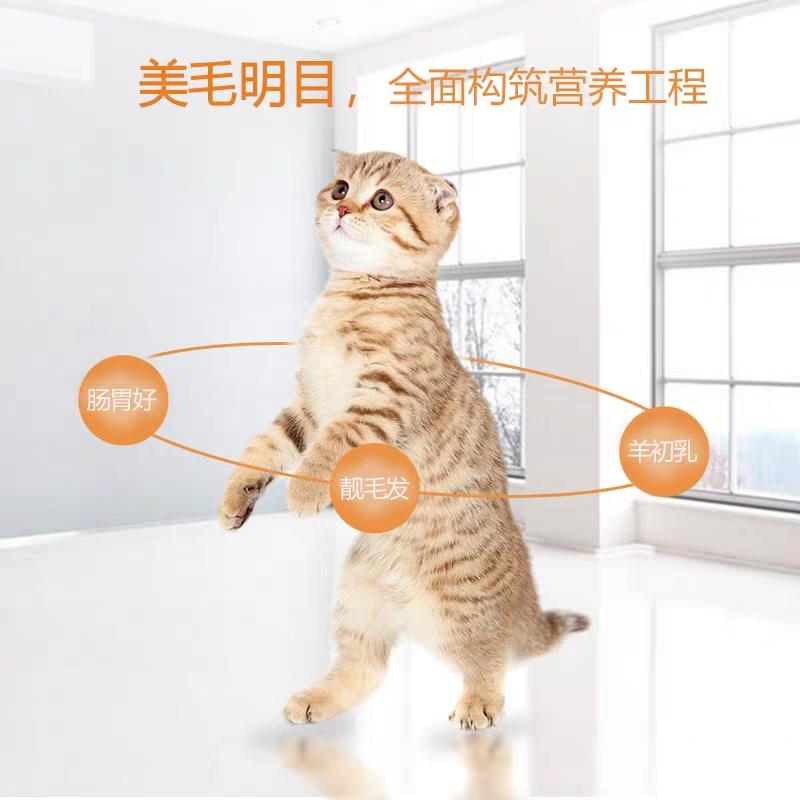 迈蒂英短蓝猫豹猫散装成幼通用型散装猫粮美毛起毛球特价5斤45元优惠券
