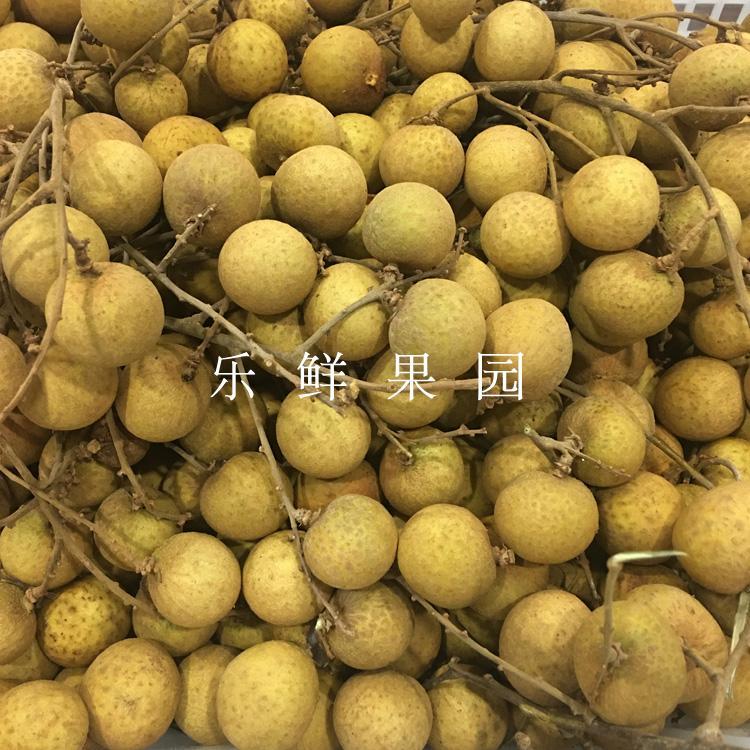 进口泰国龙眼4斤新鲜桂圆鲜果储良石峡鲜龙眼新鲜水果发顺丰速运