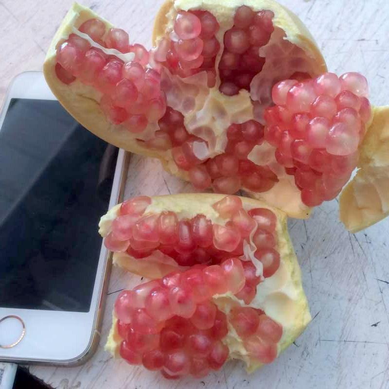 现摘云南特产蒙自甜石榴绿籽薄皮水晶石榴当季新鲜水果带箱10斤